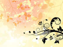 Summer Foliage Vector. Layered  illustration of various foliage elements on with graduated summer colours Stock Photo