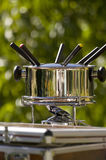 Summer  fondue I. A fondue setup in a summer garden Royalty Free Stock Images