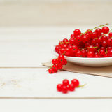 Summer food background with redcurrant Stock Photos