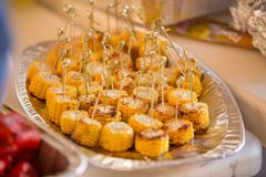Summer food. Ideas for barbecue and grill parties. stock images