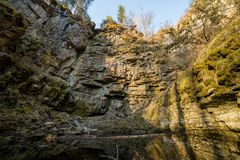 A summer forest. A big rocky wall in a middle of the forest. Mid shot royalty free stock images