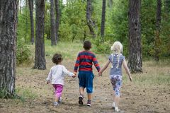 In the summer in the forest, the boy and his friends are walking. In the summer in the forest a boy with two girls is walking along the road. He holds their Stock Images