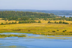 Summer forest, field and lake landscape (Karelia, Russia) Stock Images