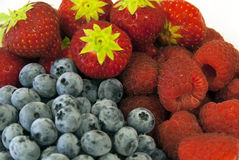 Summer forest fruits - berries Stock Photos