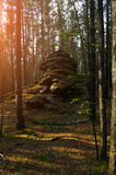 Summer forest landscape - ancient stone boulder among the trees at the sunrise Stock Photo