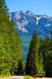 Summer forest road, Mount Baker, Washington Royalty Free Stock Images