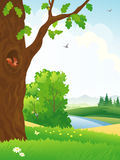 Summer forest scene. Illustration of a beautiful landscape with an oak tree Stock Images