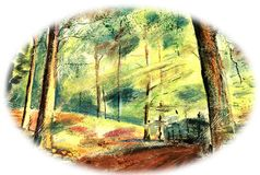 Summer forest, the sun shines through the trees. The mysterious path leads through the thicket. Birds sing in the trees stock illustration