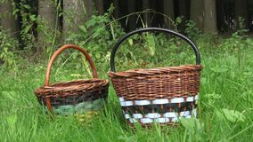 Two empty baskets. In the summer in the forest there are two empty baskets stock video