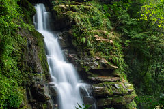 Summer forest waterfall. The flow of water after the rain of the mountain stream waterfall is very rich Stock Image