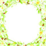 Summer frame. Green sprout bubbly summer or spring frame with flowers and butterflies, EPS10 Stock Image
