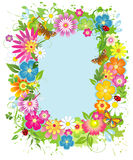 Summer frame royalty free stock image