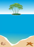 Summer frame. Summer background sea, palm trees, sand and shell Royalty Free Stock Photos