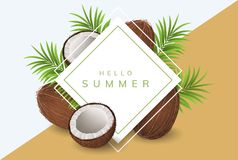 Summer frame with coconut and palm leaf Royalty Free Stock Photography