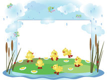 Summer frame with ducklings Royalty Free Stock Photos