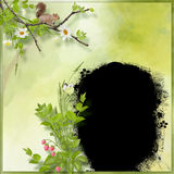 Summer frame in forest theme Royalty Free Stock Image