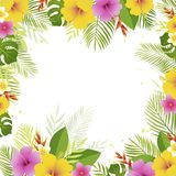 Summer frame with palm leaves and tropical flowers. Vector floral banner template. stock illustration