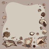 Summer Frame of seashells. stock illustration