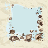 Summer Frame of seashells. Stock Image