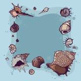 Summer Frame of seashells. Royalty Free Stock Photography