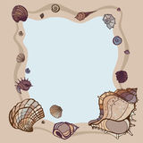 Summer Frame of seashells. Royalty Free Stock Images