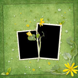 Summer frame with yellow flowers Stock Images