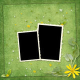 Summer frame with yellow flowers Royalty Free Stock Image