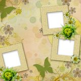 Summer frames with green butterfly, flowers Royalty Free Stock Image