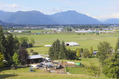 Summer in the Fraser Valley Royalty Free Stock Images