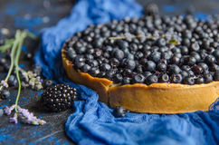 Summer french tart with blueberries on a blue background. Close-up. Royalty Free Stock Photos