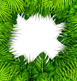 Summer Fresh Background with Green Tropical Leaves Stock Image