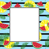 Summer fresh frame Royalty Free Stock Photos