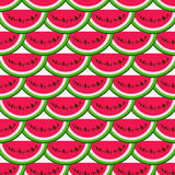Summer fresh fruit background. Vector seamless pattern with watermelon Stock Image