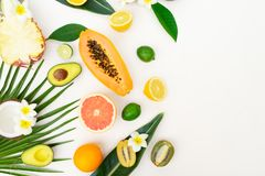 Summer fresh fruits. Fresh exotic cuted fruits slices with green tropical leves flat lay top view border, summer healthy diet background royalty free stock photography