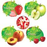 Summer fruit. Set of summer juicy fruit Royalty Free Stock Photos