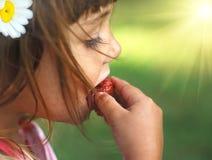Summer fruit. Little girl eat strawberry in the garden Royalty Free Stock Image