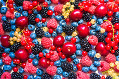 Summer fruit and berries. 6 types of raw organic farmer berries. Raspberries blackberries blueberries strawberries red currants gooseberries. Close top view Royalty Free Stock Images
