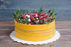 A summer fruit cake rolled in  yellow biscuit Stock Photography