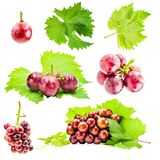 Grapes with leaves set isolated on white background stock photos