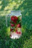 Summer fruit drink on green grass. Summer mood royalty free stock photos