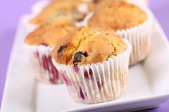 Summer fruit muffins. Delicious homemade summer fruit muffins, contains blueberries, raspberries and blackberries Royalty Free Stock Images