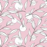 Summer fruit peach banner. Vector sketch illustration. Exotic leaves nectarine pattern. Pastel color print. Doodle sweet Stock Image