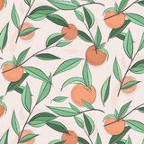 Summer fruit peach banner. Vector sketch illustration. Exotic leaves nectarine pattern. Pastel color print. Doodle sweet Stock Photo