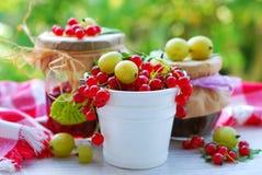 Summer fruit preserves Royalty Free Stock Photo