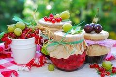 Summer fruit preserves Stock Photos
