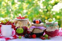 Summer fruit preserves Royalty Free Stock Image