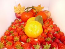 Summer fruit. A selection of fresh healthy fruit,with strawberries, lush red tomatoes and oranges with autumn leaves Royalty Free Stock Photos