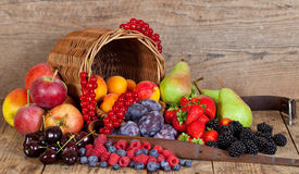 Free Summer Fruits Stock Image - 15601871