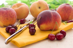 Summer fruits Stock Photos