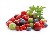Summer fruits Royalty Free Stock Photos
